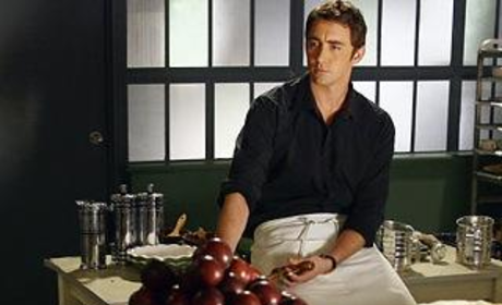 Pushing Daisies Cast to Make Talk Show Rounds