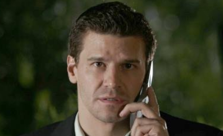 Breaking Bones Scoop: A Brain Tumor for Booth
