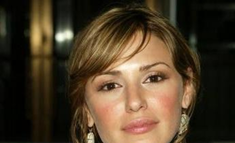 Details on Elizabeth Hendrickson's Role on The Young and the Restless