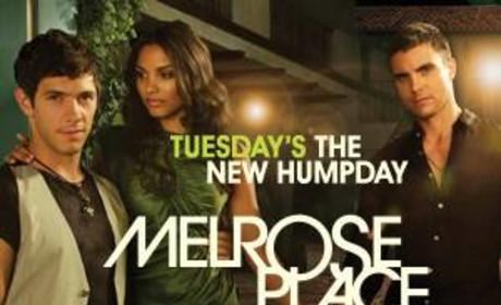 New Melrose Place Posters Promise Sex, Sex and More Sex!
