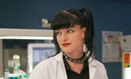 Confirmed: Pauley Perrette is Off to Los Angeles