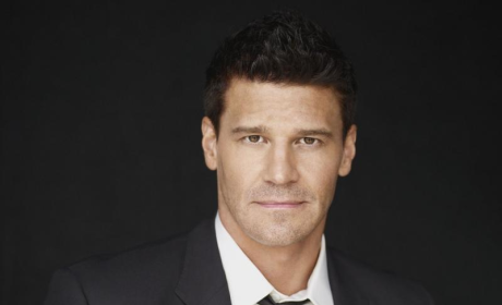 Bones Spinoff Episode Pushed Back to 2011