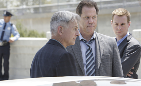 NCIS Boss Reveals Little About Tony and Ziva