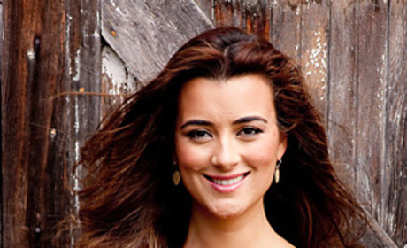 Cote de Pablo Dishes on NCIS' Ziva and Tony