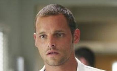 Dr. Karev Scours