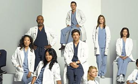 Grey's Anatomy: The Season Four Cast