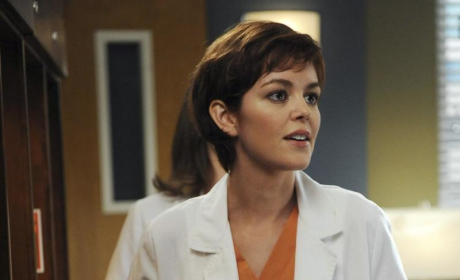 Nora Zehetner Speaks on Grey's Anatomy Character