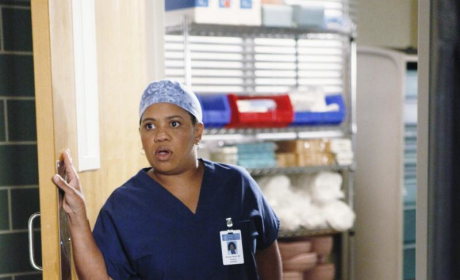 Shonda Rhimes Previews Grey's Anatomy Valentines Day Episode