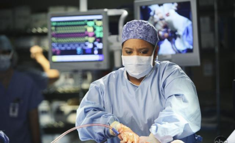 Chandra Wilson Reflects on Grey's Anatomy Season Finale, Ponders Future
