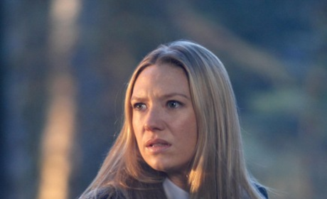 TV Fanatic Awards: Anna Torv vs. Emily Deschanel!