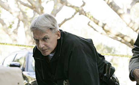 NCIS Interview: Mark Harmon on Gibbs' Future