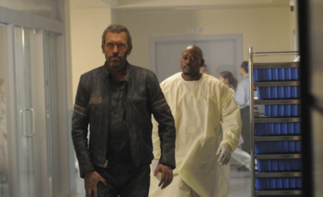House Season Six Report Card: B-