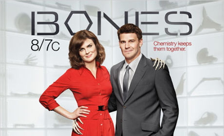 Bones Season 6 Poster: Chemistry Keeps Them Together