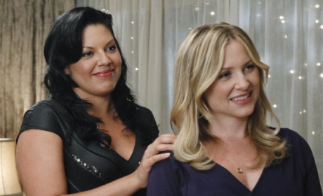 Grey's Anatomy Couples Gossip: Calzona, Lexie, Mark & More