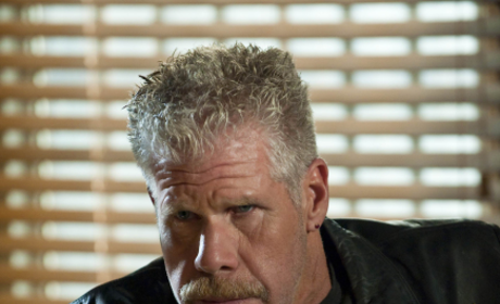 Ron Pearlman Pic