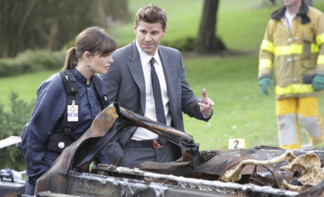 Bones Spoilers: TWO Proposals to Come!