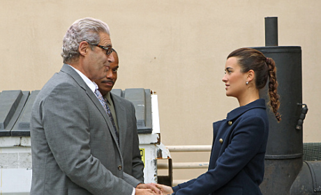 "NCIS Review: ""Enemies Foreign"""