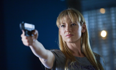 TV Fanatic Mid-Season Report Card: Fringe