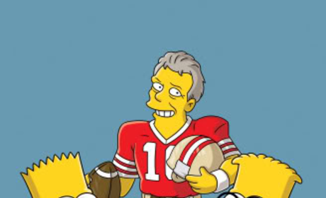 Simpsons Stunt