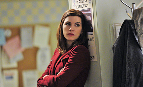 TV Fanatic Mid-Season Report Card: The Good Wife 12/26/2010