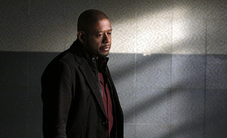 "Criminal Minds: Suspect Behavior Review: ""See No Evil"""