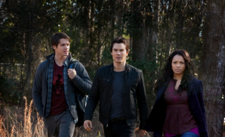 Jeremy, Damon and Bonnie