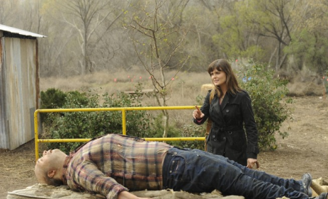 "Bones Review: ""The Feet on the Beach"""