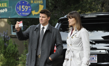 Seeley Booth, FBI
