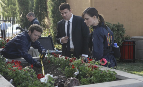 Bones Review: This Truth Hurts