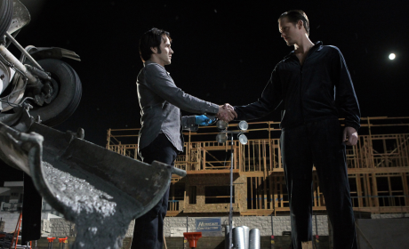 True Blood Spoilers: Werewolves vs. Vampires vs. Fairies!