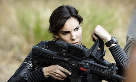 Hawaii Five-O/NCIS: Los Angeles Crossover Alert: Aloha, Agent Kensi!