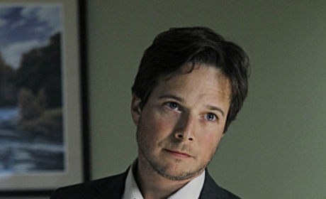 Scott Wolf Cast in Joey Dakota