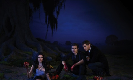 Who Else is Returning to The Vampire Diaries?