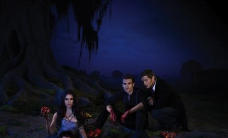 The Vampire Diaries Poster: Teasing Delena?