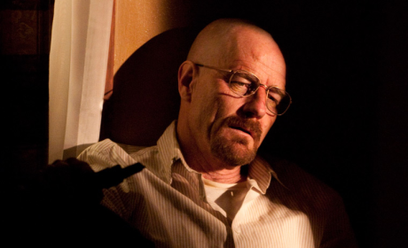 Walter White, Defeated