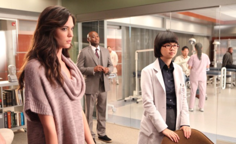 Odette Annable to Boss Around Walden on Two and a Half Men