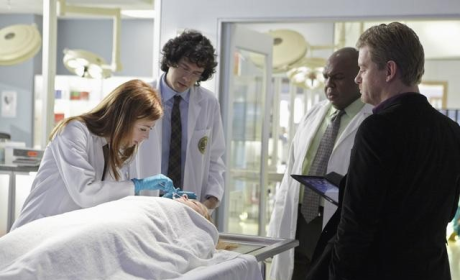 Body of Proof Review: All That Glitters
