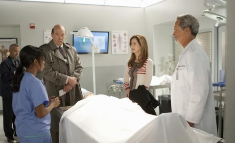 Body of Proof Review: Girl With the Dragonfly Tattoo