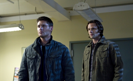 Supernatural Season 8 Spoilers: Angels vs. Demons!
