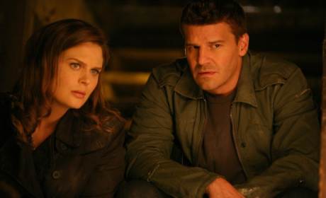 Bones Review: Murder by Rainbow