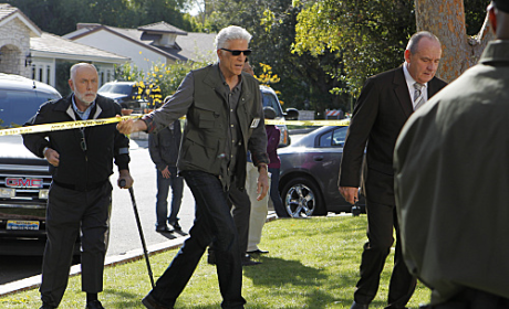 CSI Review: What's Up Doc?