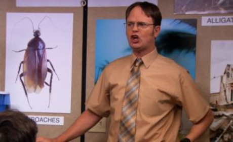 Dwight in Charge