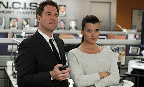 NCIS to Explore Love ... in an Elevator?