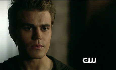 Paul Wesley Wants to Direct, Go Really Dark on The Vampire Diaries