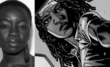 Danai Gurira Cast as Michonne on The Walking Dead Season 3