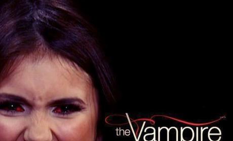 Fan Made Vampire Diaries Poster