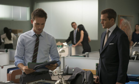 Suits Summer Finale Review: Your Team
