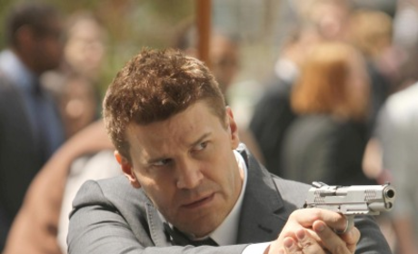 Agent Seeley Booth, FBI
