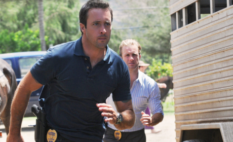 Hawaii Five-0 to Let Viewers Choose Episode Ending