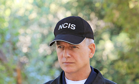 A Leroy Jethro Gibbs Picture
